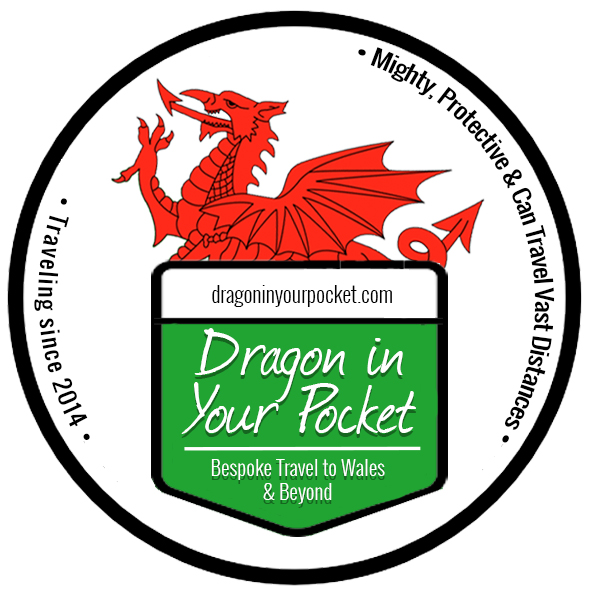 Dragon in Your Pocket Travel